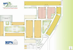 Layout Plan: RPS Palms